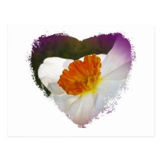 Artículos coordinados florales del narciso blanco postales