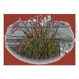 Artículos de coordinación de la hierba decorativa  tarjeta de felicitación