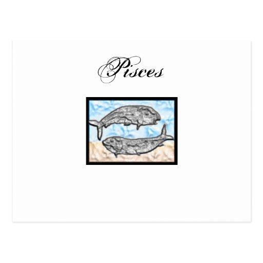 Artículos del zodiaco de Piscis Tarjeta Postal