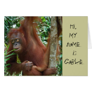 Artistas animales tarjeta pequeña