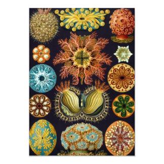 Ascidiae de Ernst Haeckel, invitaciones marinas Invitación 12,7 X 17,8 Cm