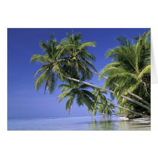 Asia, islas maldivas. Hombre en hamaca en 2 Tarjeta De Felicitación