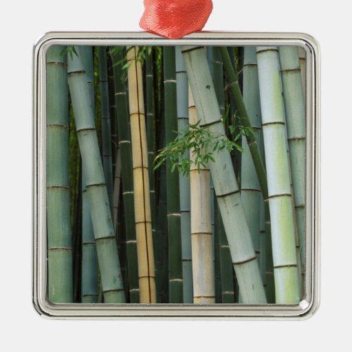 Asia, Japón, Kyoto, Arashiyama, Sagano, bambú Adorno De Navidad