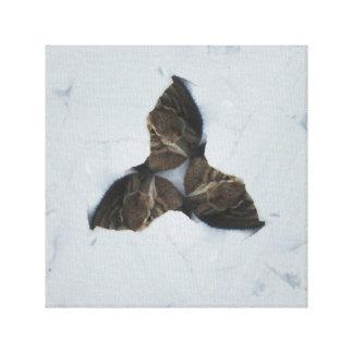 Asilo del conejito impresión en lienzo