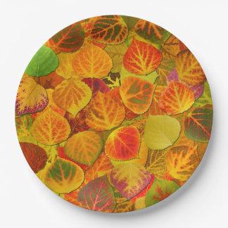 Aspen sale collage del relevo sólido 1 plato de papel