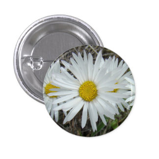 Aster liso de los Wildflowers blancos F0042 Chapa Redonda De 2,5 Cm