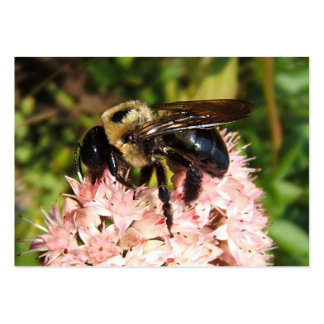 ATC del ~ de la abeja de carpintero Tarjeta De Visita
