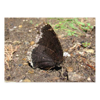ATC del ~ de la mariposa de capa de luto Tarjetas De Visita Grandes