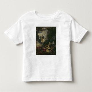 Athena que visita las musas camisas