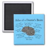 Atlas del cerebro de un dentista iman para frigorífico