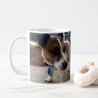 Atracción del fox terrier, taza del café con leche