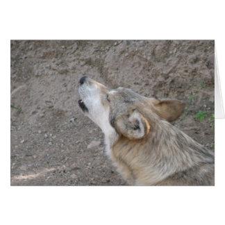 Aullido mexicano del lobo tarjeta de felicitación