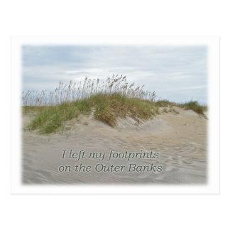 Avena del mar en la duna de arena Outer Banks NC Postal