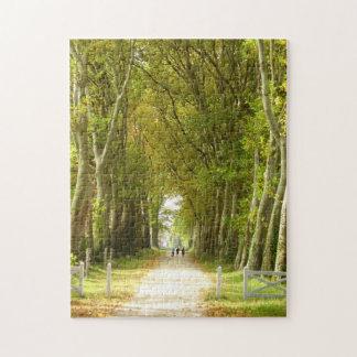 Avenida del rompecabezas de la foto de los árboles