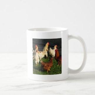 Aves de corral taza de café