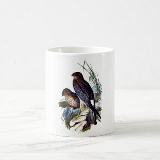 Aves rapaces taza de café