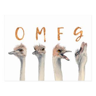 Avestruces de OMFG Postal
