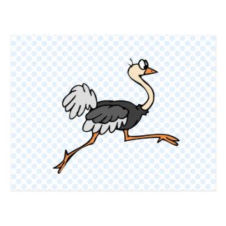 Avestruz de Ollie Postal