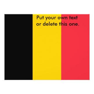 Aviador con la bandera de Bélgica Tarjetas Informativas