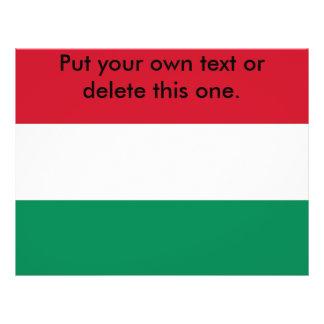 Aviador con la bandera de Hungría Tarjeton