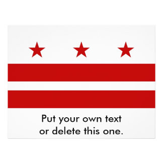 Aviador con la bandera del Washington DC, los E.E. Tarjetón