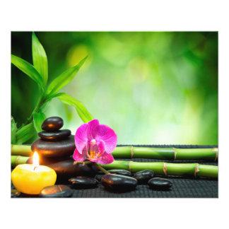 Aviador del masaje de la belleza de la salud del flyer