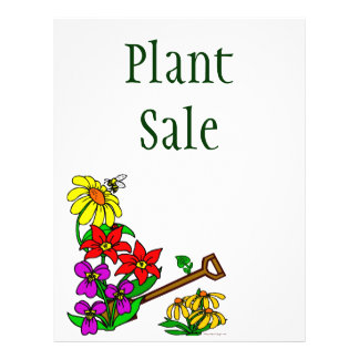 Aviador del personalizado de las plantas y de las  folleto 21,6 x 28 cm
