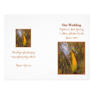 Aviadores brillantes del programa del boda del folleto 21,6 x 28 cm