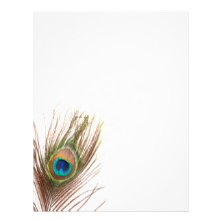 Aviadores de la pluma del pavo real folleto 21,6 x 28 cm