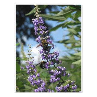 aviadores de trabajo de las abejas folleto 21,6 x 28 cm