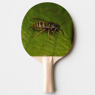 Avispa común pala de ping pong