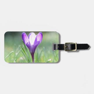 Azafrán púrpura en primavera etiquetas para maletas
