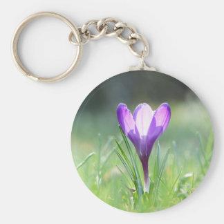 Azafrán púrpura en primavera llavero redondo tipo chapa