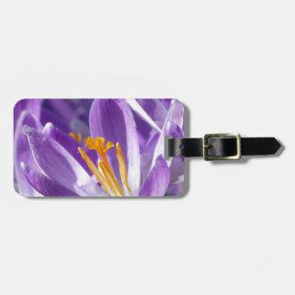 Azafrán violeta de la primavera etiquetas maleta