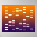 Azul anaranjado del código genético de la DNA Póster