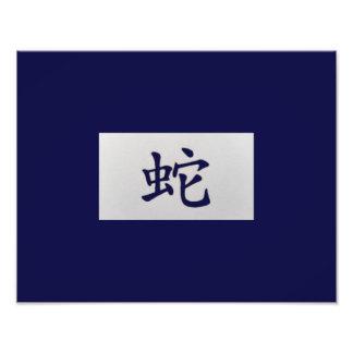Azul chino de la serpiente de la muestra del fotografías