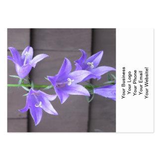 Azul de la flor de la planta de jardín del tarjetas de visita grandes
