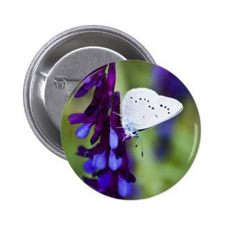 Azul de la plata del alto contraste pin