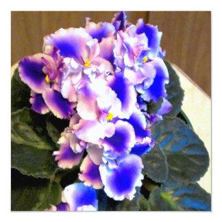 Azul de la violeta africana invitación 13,3 cm x 13,3cm
