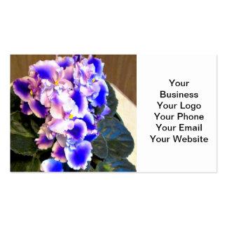 Azul de la violeta africana tarjetas de visita
