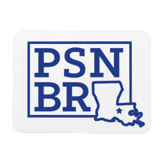 Azul del BR del PSN en el imán blanco del estado