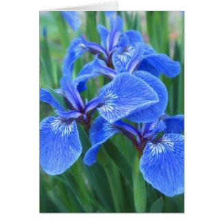 Azul del iris tarjeta de felicitación