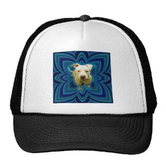 Azul en azul gorras de camionero