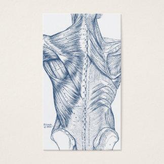 Azul médico de los músculos traseros del dibujo tarjeta de negocios