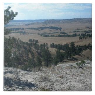 Azulejo Altas colinas del desierto