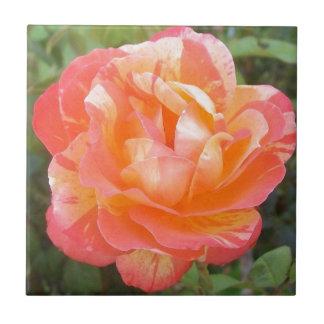 Azulejo Amarillo y color de rosa rayado anaranjado