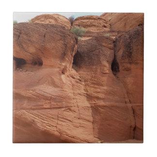 Azulejo ARIZONA - barranco superior A del antílope - roca