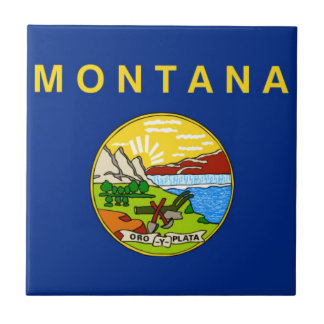Azulejo Bandera de Montana