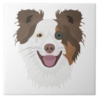 Azulejo Border collie feliz de la cara de los perros del
