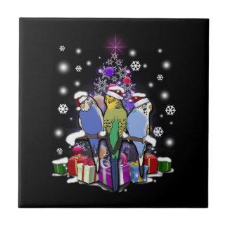 Azulejo Budgerigars con el navidad regalo y copos de nieve